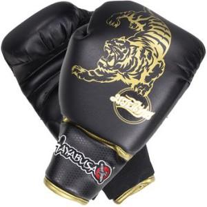 Hayabusa Muay Thai Gloves