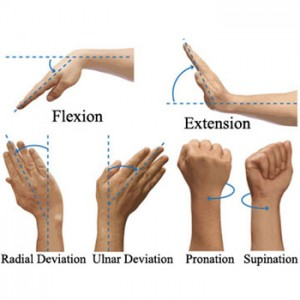 Wrist-Flexion-and-Extension