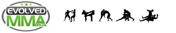 evolved MMA