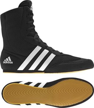 Best Boxing Shoes | Top 5 Best Shoes for Boxing evolved MMA