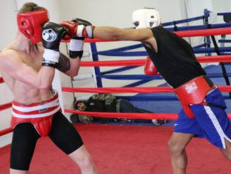 Bester boxer 2017