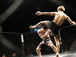 Punches in bunches of MMA heavyweight giants